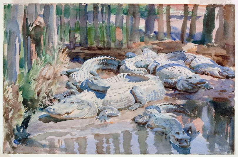 Muddy Alligators, 1917. John Singer Sargent, American (active London, Florence, and Paris), 1856-1925. Watercolor over graphite, with masking out and scraping, on wove paper, Sheet: 13 9/16 × 20 7/8 inches. Worcester Art Museum, Sustaining Membership Fund.