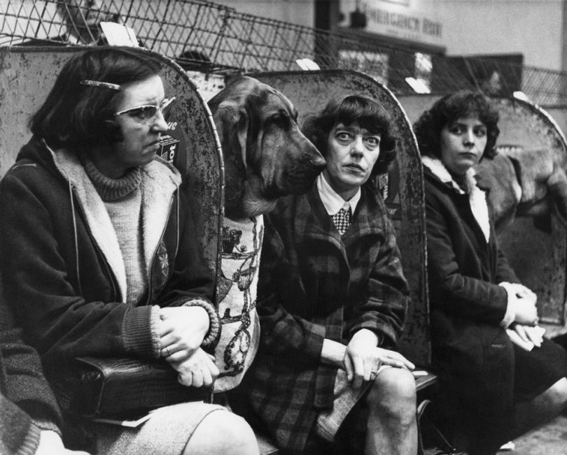 © Estate of Shirley Baker/Mary Evans Picture Library