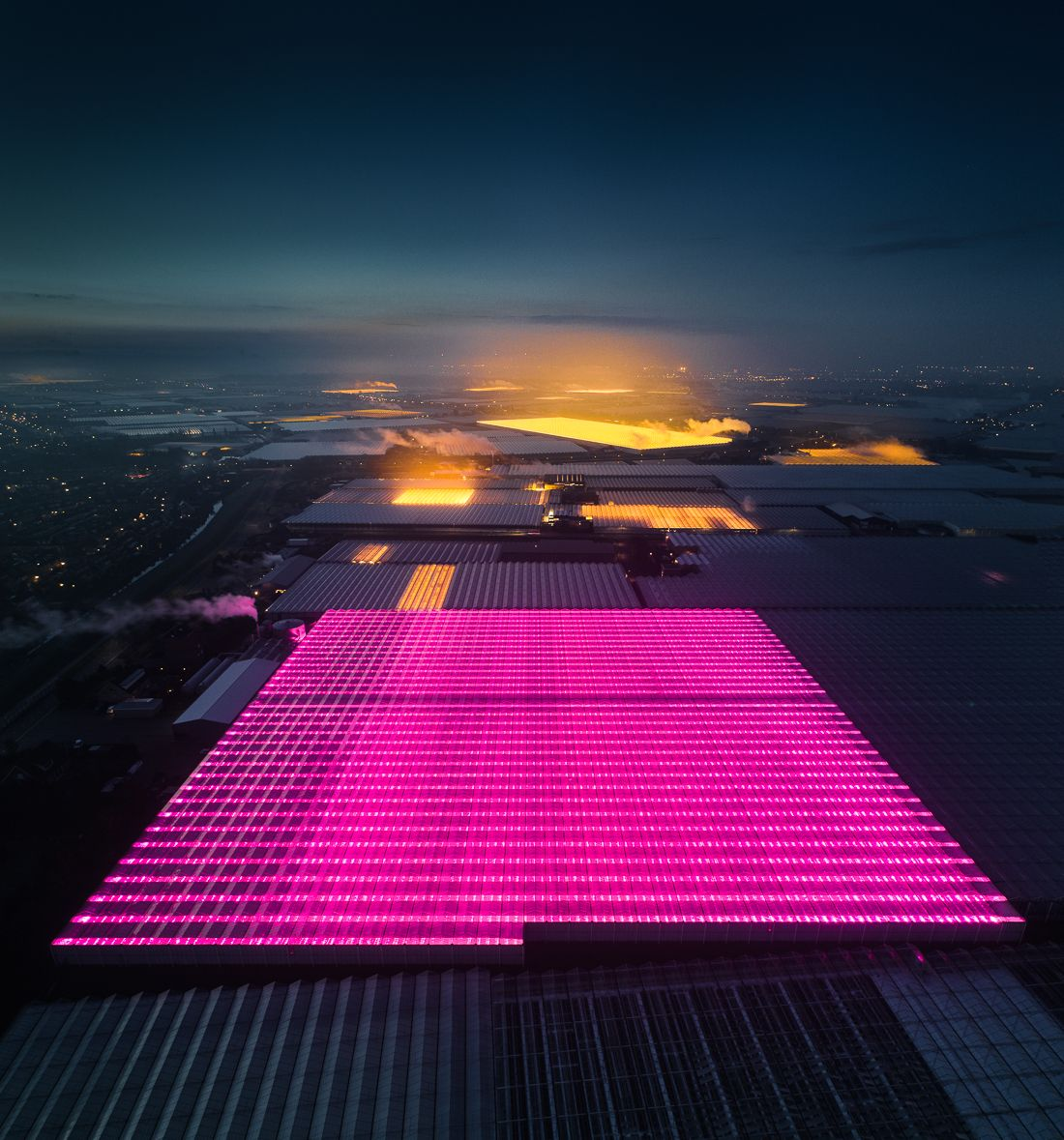 Beautiful yet disturbing aerial photographs of LED-lit greenhouses in The Netherlands