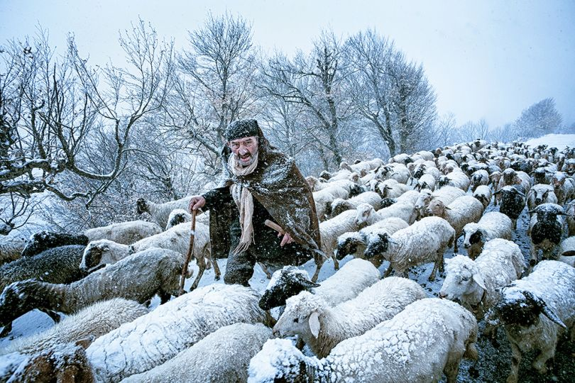 Old Shepherd by Saeed Barikani, Iran, Shortlist, Smile, Open, 2015 Sony World Photography Awards