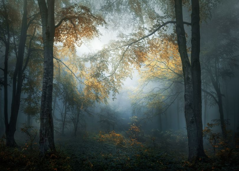 Copyright: © Veselin Atanasov, Bulgaria, Open Photographer of the Year, Open, Landscape & Nature (2018 Open competition), 2018 Sony World Photography Awards