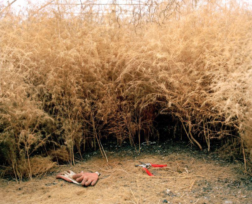 Polytunnel, 2019. Copyright: © Marco Kesseler, United Kingdom, Shortlist, Professional, Landscape (Professional competition), 2019 Sony World Photography Awards