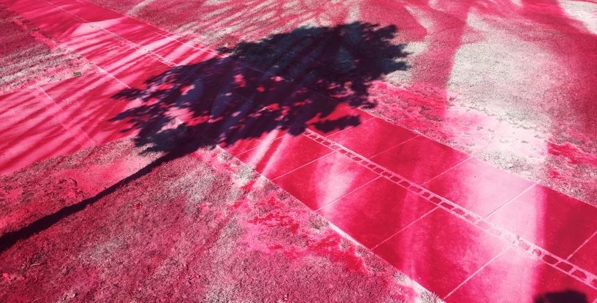 Katharina Grosse, Asphalt Air and Hair, 2017 ARoS Triennial THE GARDEN – End of Times; Beginning of Time. The Garden – The Future, Aarhus, Denmark. © Katharina Grosse und VG Bild-Kunst, Bonn 2017. Photo: Studio Grosse