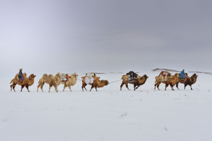 The Journey Back to Nature, Mongolia, 2014 © Marc Progin. Courtesy of Blue Lotus Gallery