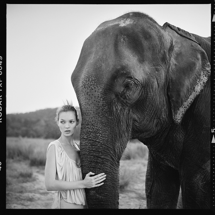 New exhibition reveals rarely seen works by renowned fashion photographer Arthur Elgort