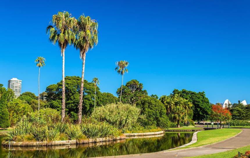 Royal Botanical Garden of Sydney