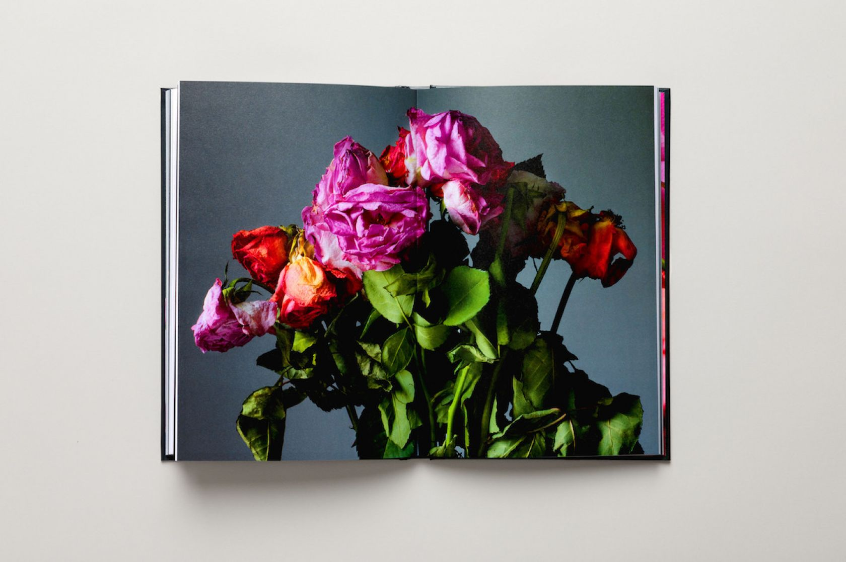 Rankin launches new isolation-themed photography collection to help care workers