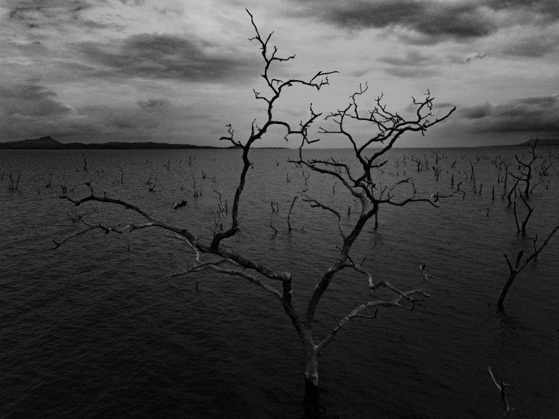 © Jeremy Snell