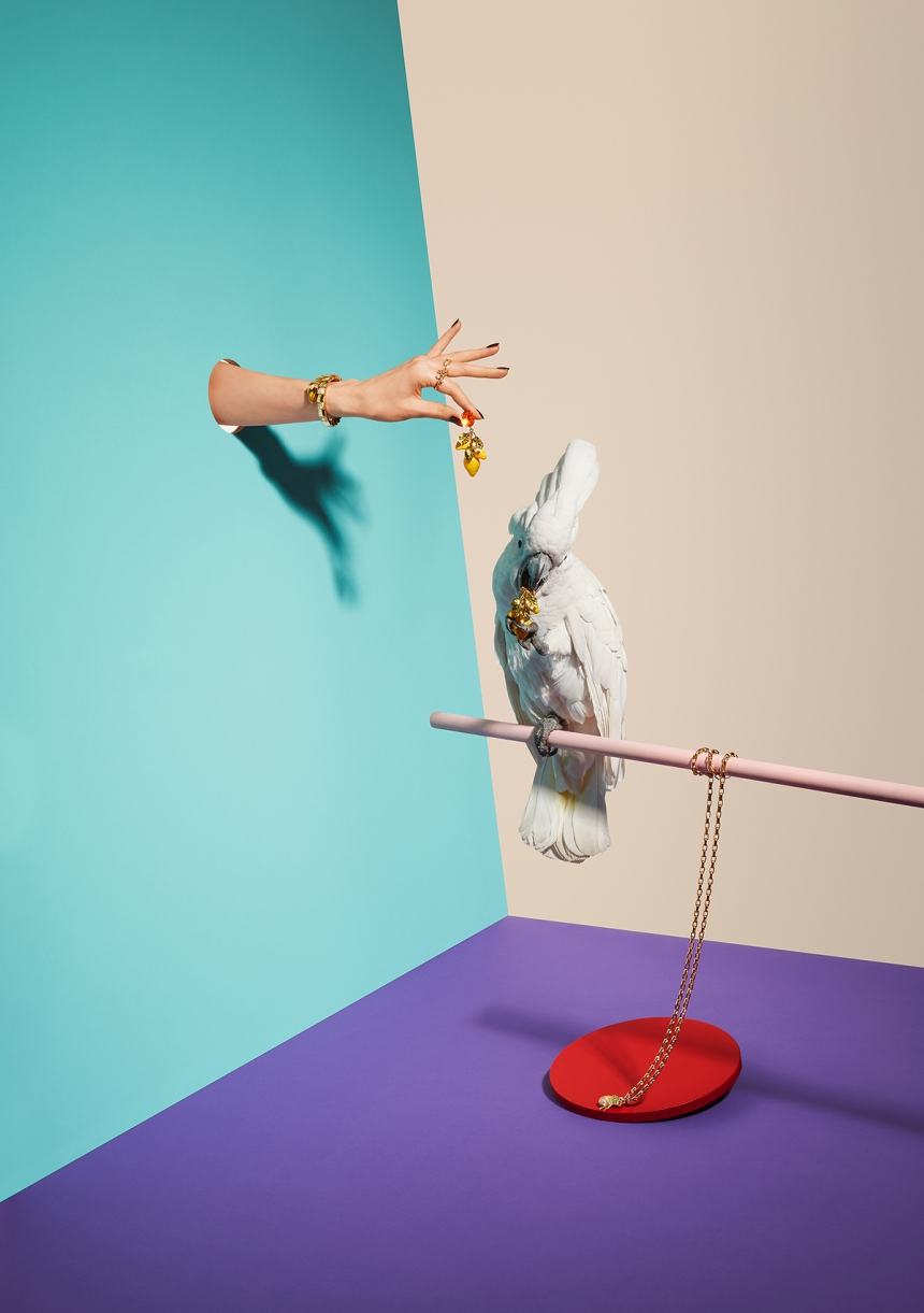 Animals vs. Jewellery - Oliver Schwarzwald: Editorial for German Stern magazine, jewellery special. (Professional Still Life)
