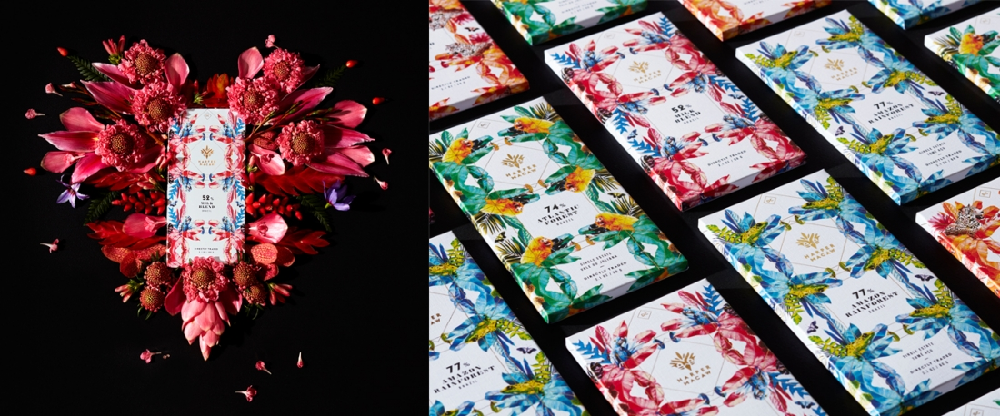 Harper Macaw chocolate Branding and package design
