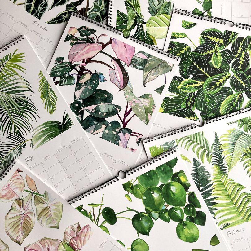 Botanical Calendar by Aleksandra Stanglewicz