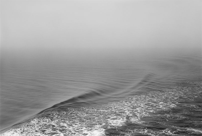 © Sergio Purtell