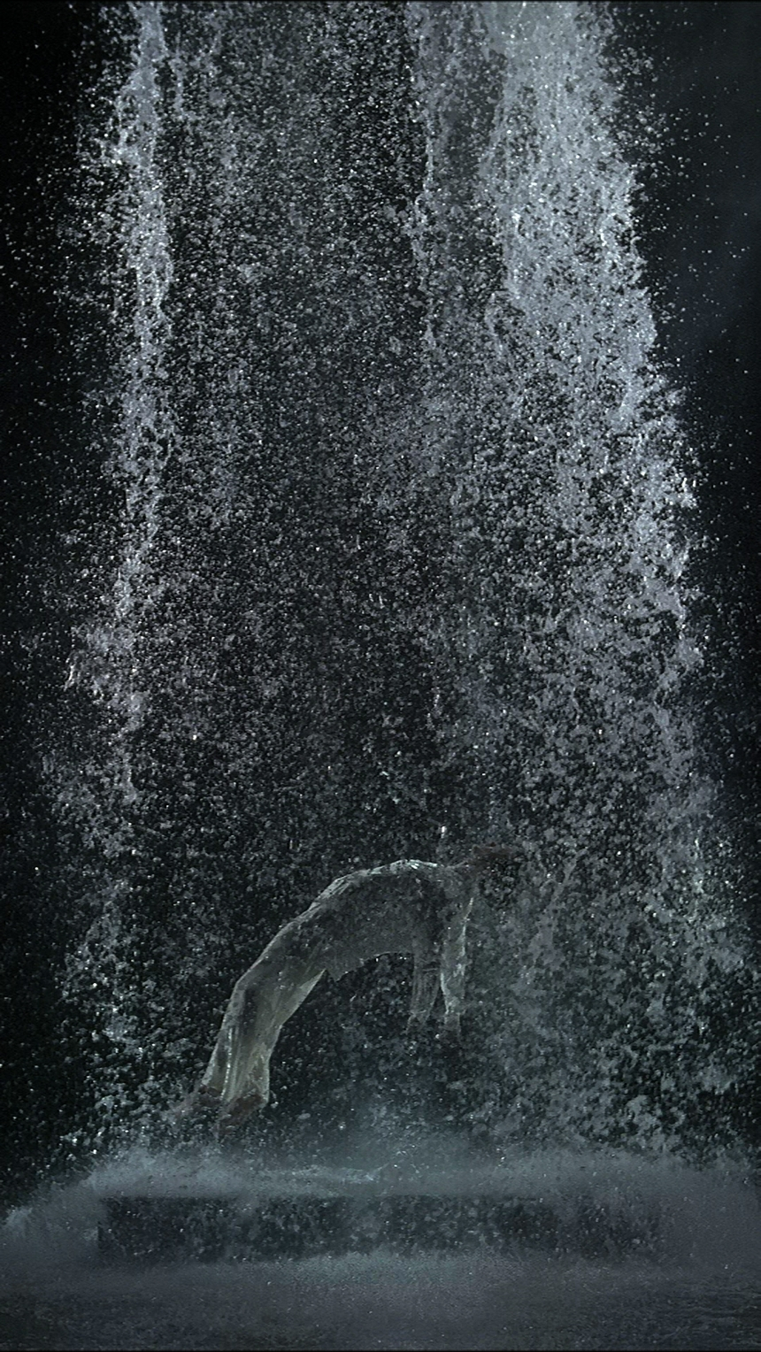 The life and career of bill viola