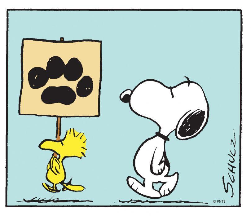 Detail of Peanuts 06.07.1968 © Peanuts