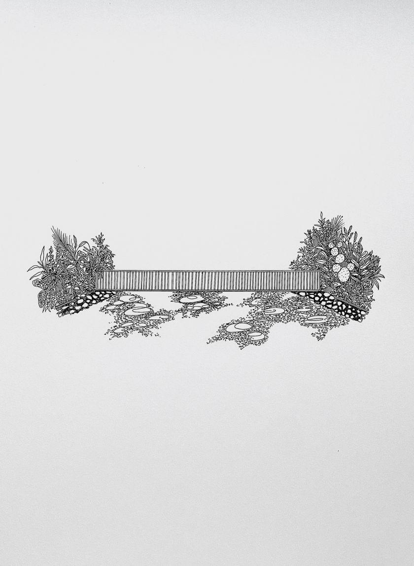From the series, Wilt, Fall, Root, Grow © Zara Tisma