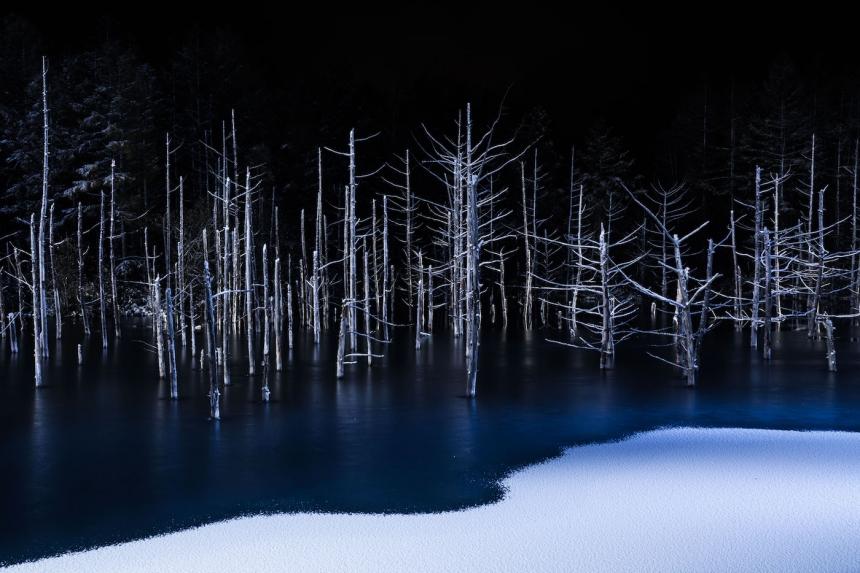 Copyright: © Hiroshi Tanita, Japan, 1st Place, Open, Nature, 2017 Sony World Photography Awards