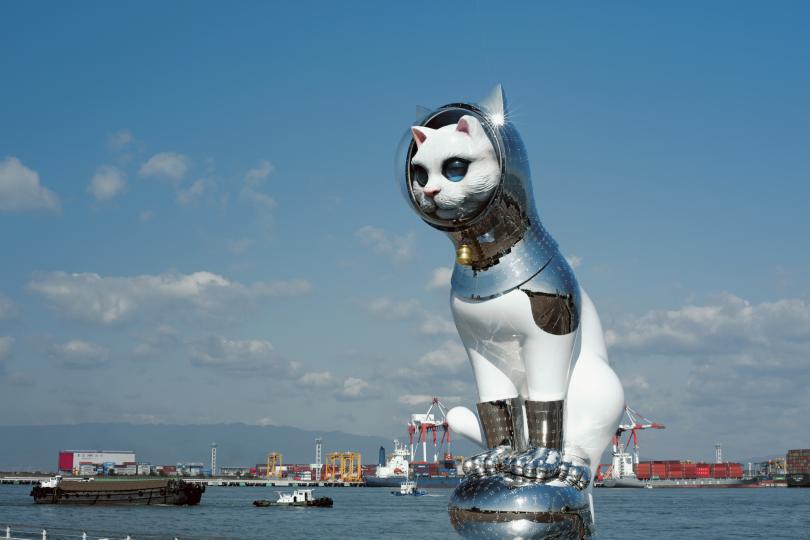 Yanobe Kenji, Ship's Cat, photograph by Ryoichi Ageishi
