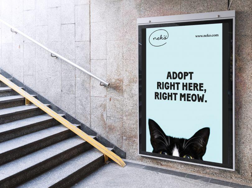 Neko cat adoption identity