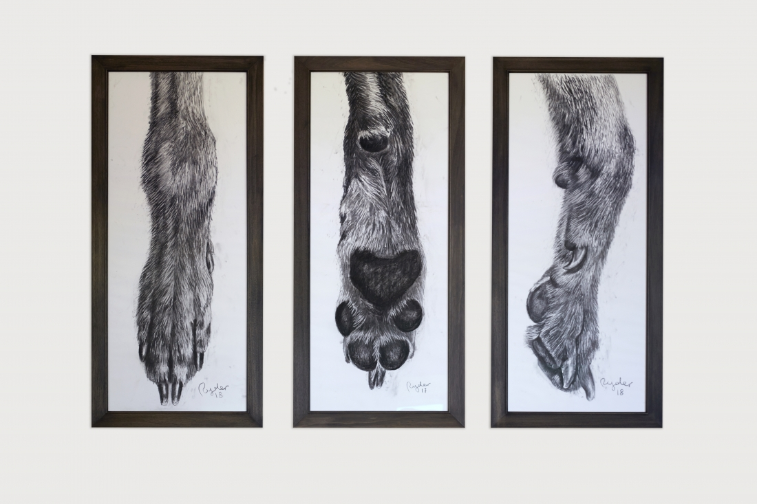 Dog Foot, Front, Back, Side, 161 X 72cm, photo by Tania Dolvers, courtesy of Hignell Gallery