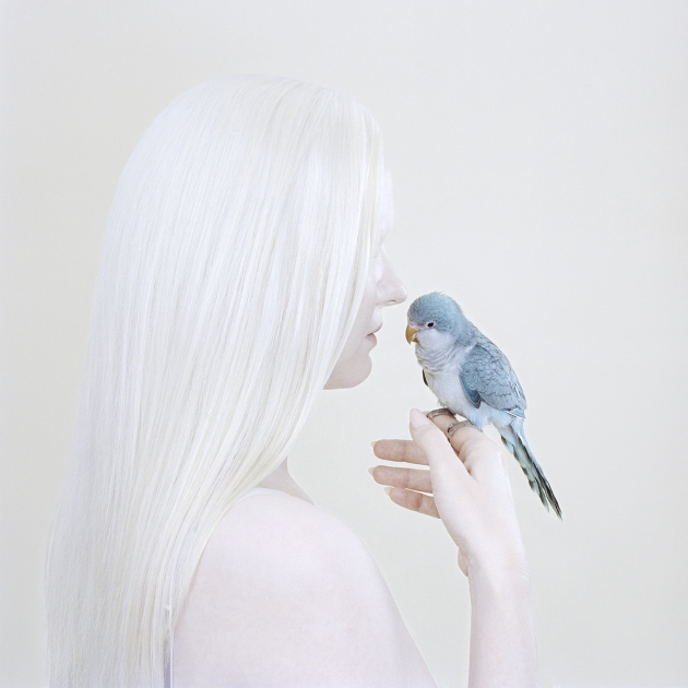 Birds Eye, 2018 pigment print 100 x 100 cm edition of 8 + 2AP $6,000 unframed 120 x 120 cm edition 4 + 2AP $8,000 unframed. © Petrina Hicks