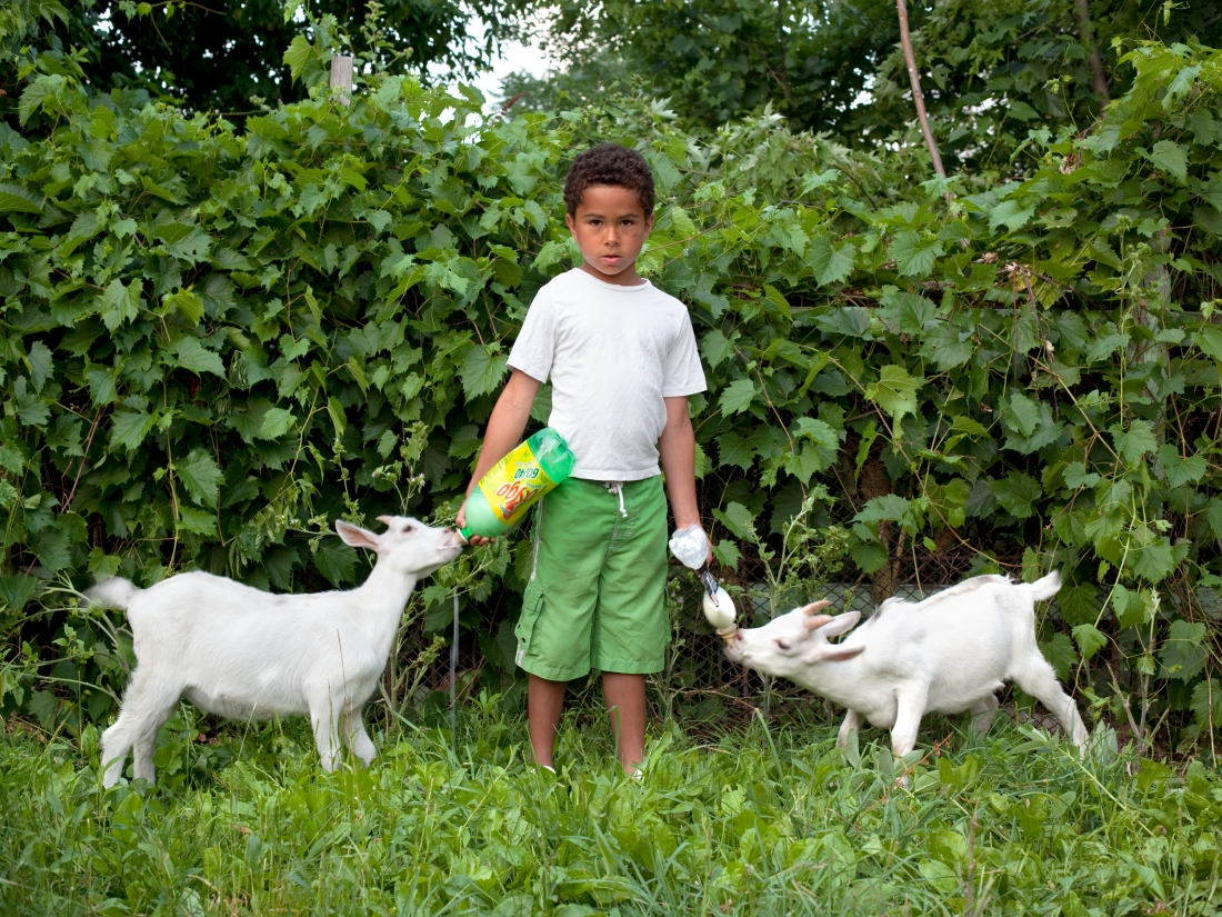 PJ and goats, 2011. Courtesy of Corine Vermeulen