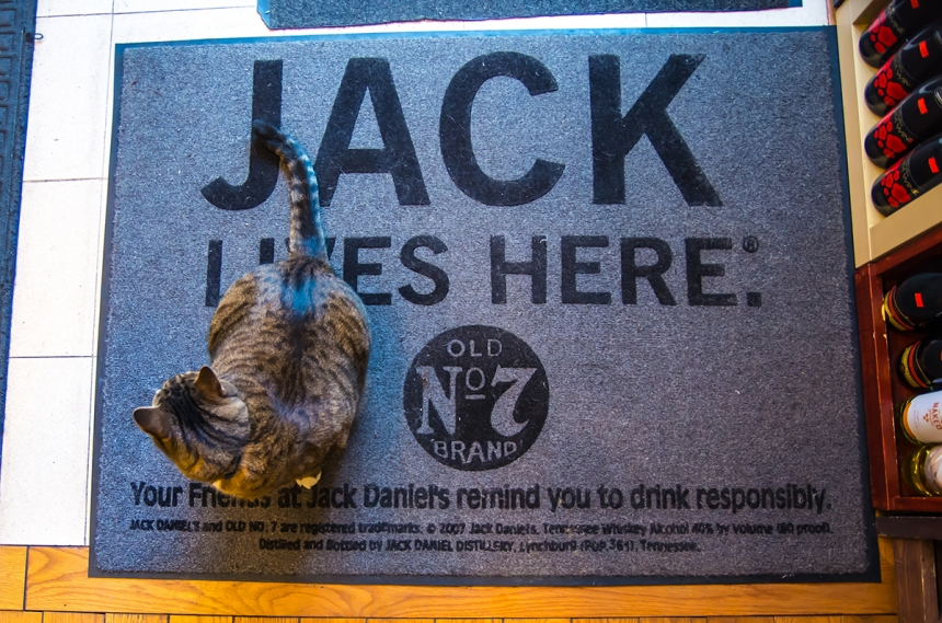 Jack – Wine Heaven