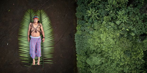 Seeds of Resistance © Pablo Albarenga, Uruguay, Photographer of the Year, Sony World Photography Awards 2020