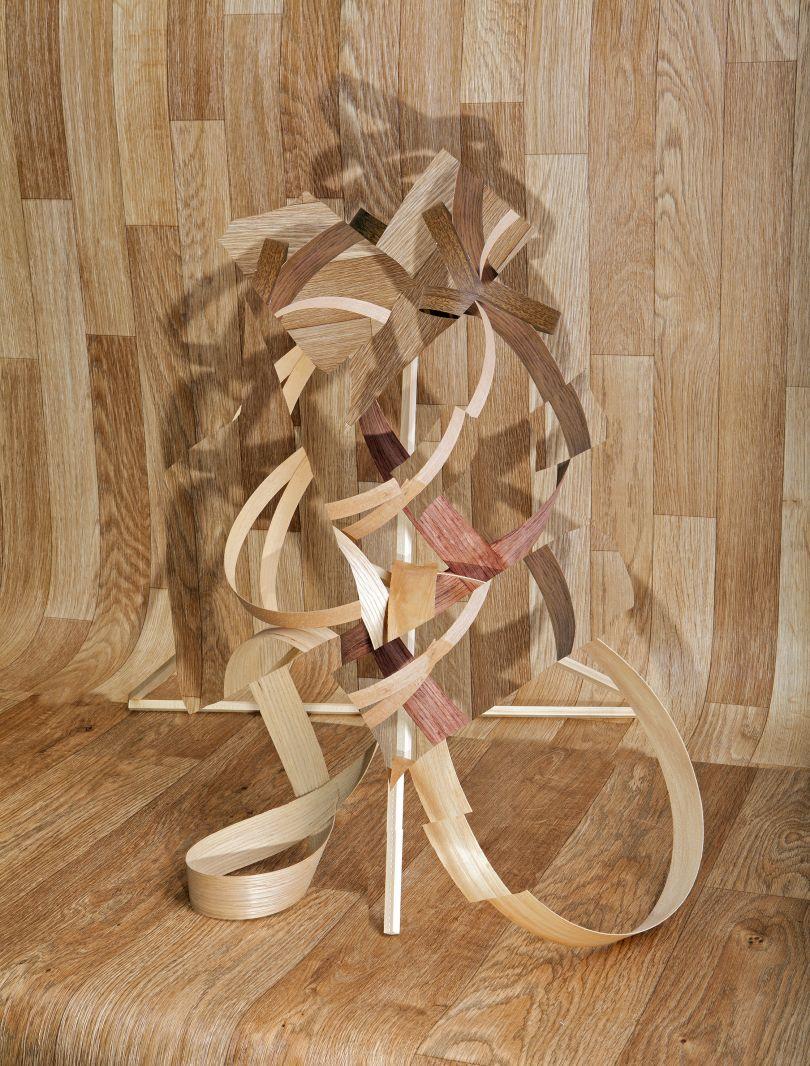Veneer Wood Wood, 2014 © Nico Krijno courtesy Beetles + Huxley