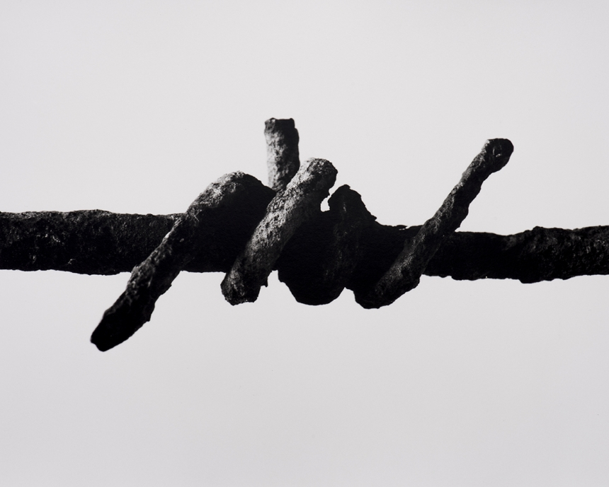 Wire from Serre. © Peter Cattrell