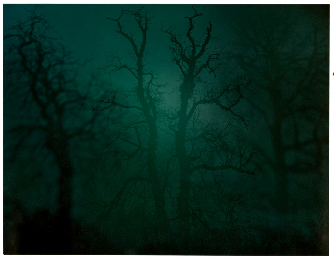 In Darkness Visible (Verse I) #14 (2007) © Nicholas Hughes