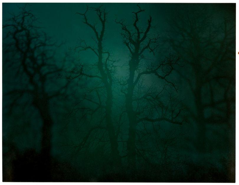 In Darkness Visible (Verse I) #14 (2007) © Nicholas Hughes