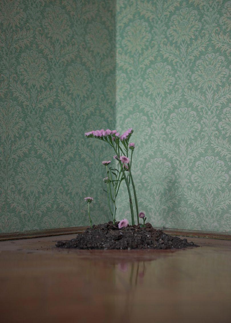 © Marietta Varga