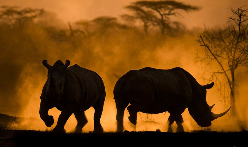 'Dust sunset' by Anna-Mart Kruger/Photocrowd.com - Namibia