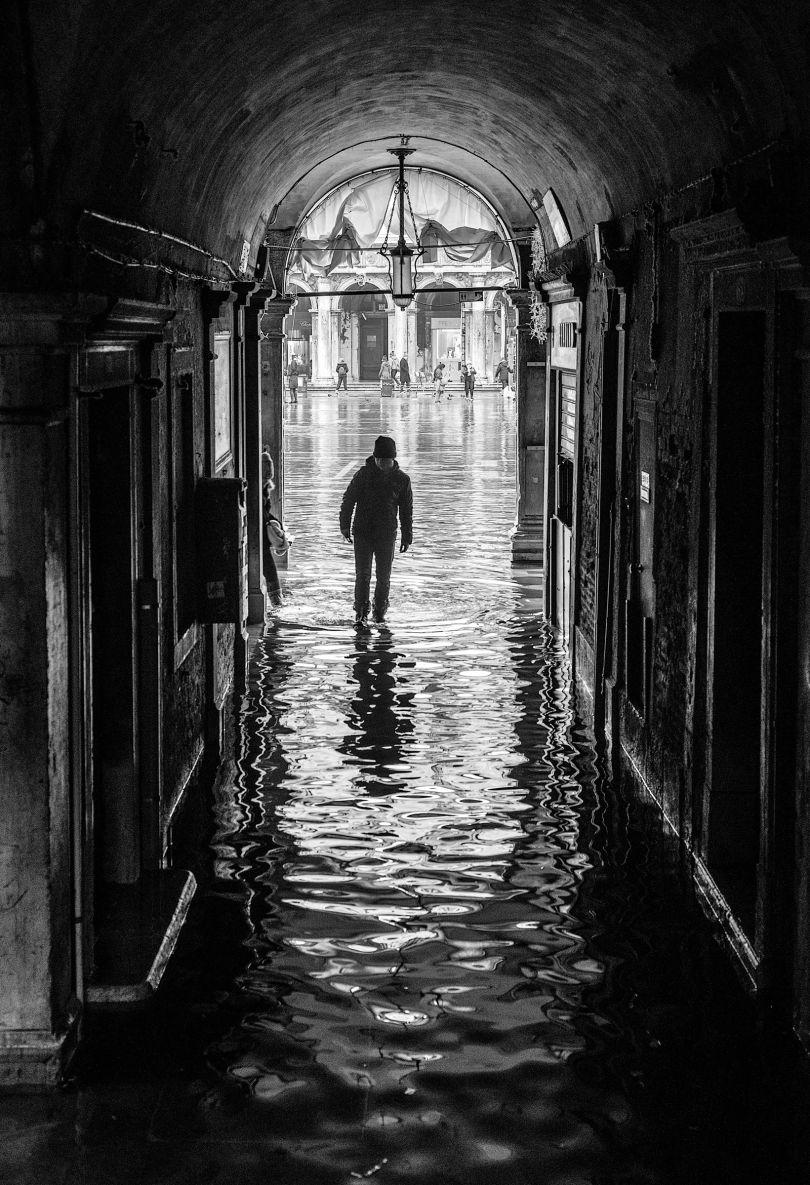 © Tony Sellen