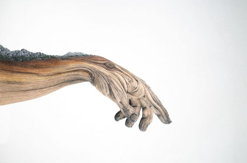 Within Arm's Reach | Christopher David White