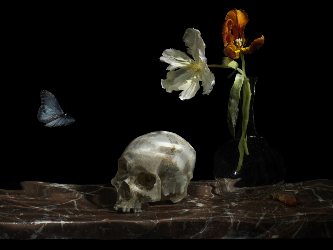 Alexander James, 'The Great Leveller', 2010, from 'Vanitas',Chromogenic print, mounted to polished aluminium plate, Face mounted with museum grade ar acrylic, 19 x 25 cm