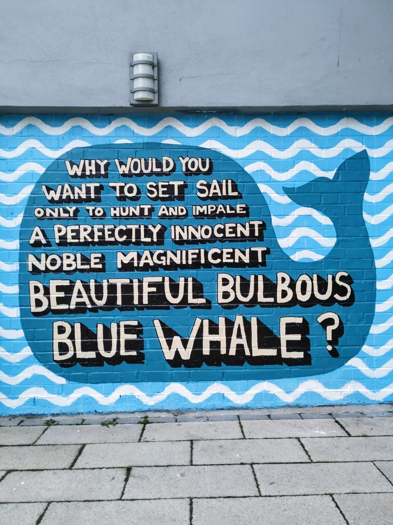 Whale Mural at Gnome House © Angry Dan