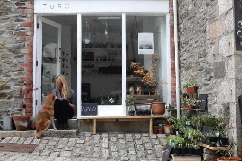 Toro Studio