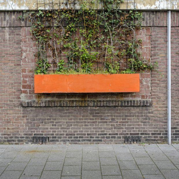 © Maarten Vromans