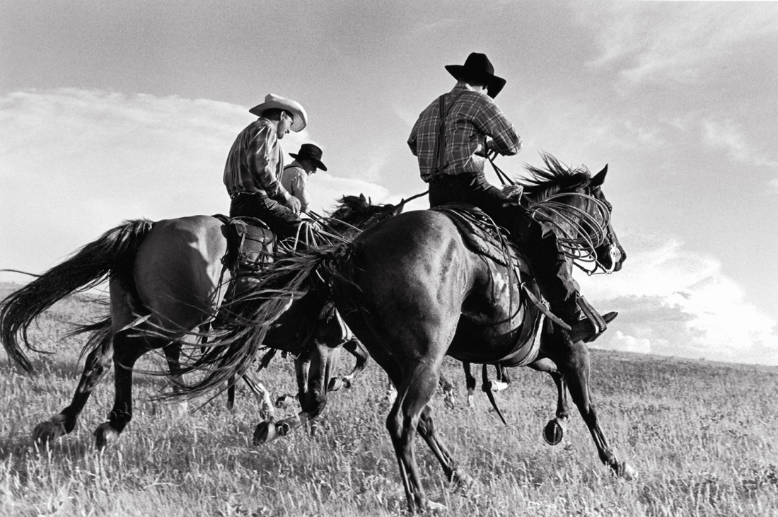 Laura Wilson, Hutterite Cowboys Galloping, Surprise Creek Colony Stanford, Montana July 12, 1996