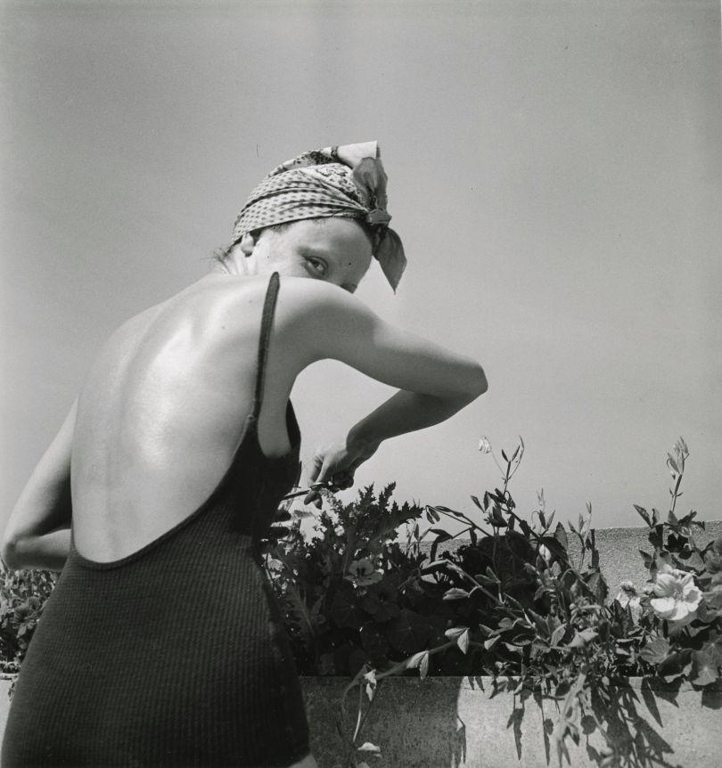 J.H. Lartigue © Ministère de la Culture - France / A.A.J.H.L. 'Coco on the terrace, Neuilly, June 1938'