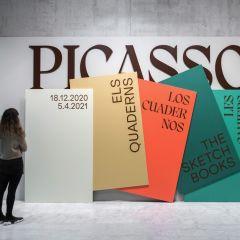 Work by Ara Estudio for Museu Picasso using Pangram Pangram's Migra