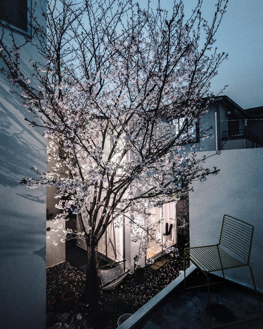 Office of Ryue Nishizawa Moriyama House, 2005 Photo: Takae Satoshi