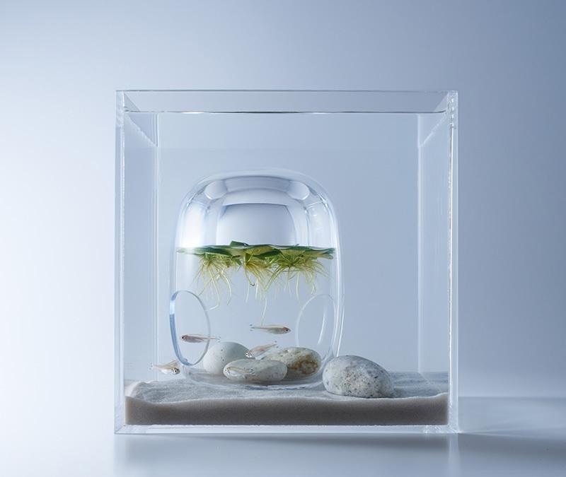 Waterscapes: Minimalist aquariums that float the idea of underwater 3D ...