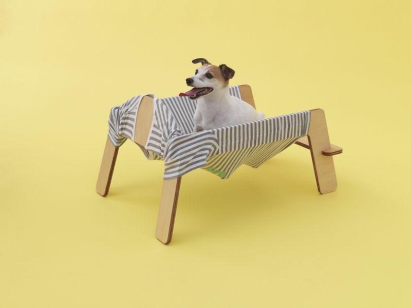 Wanmock by Torafu Architects for Jack Russell Terrier. Photo: Hiroshi Yoda.