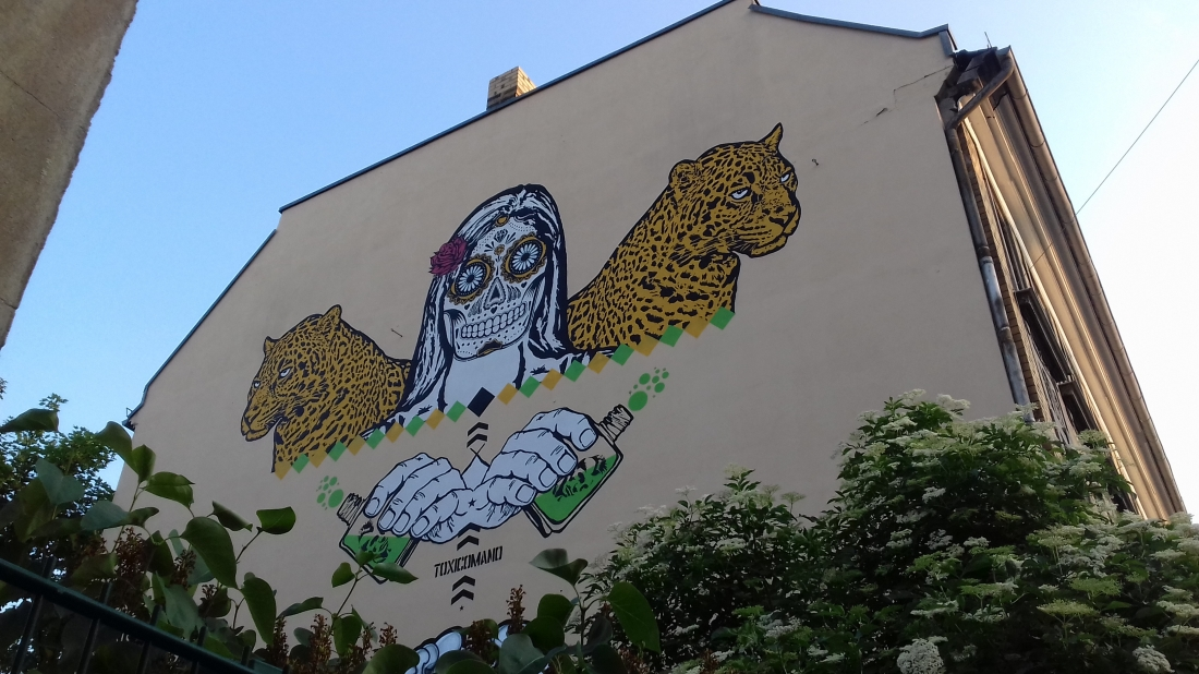 Street art in Connewitz, a vibrant area of the city still infliuenced by squatting culture