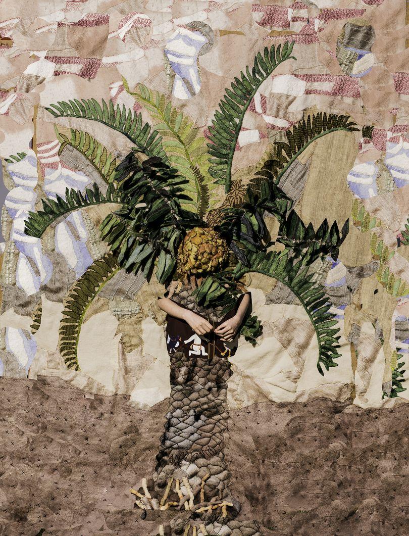 Potato Palm in Full Sun, 2016 © Nico Krijno courtesy Beetles + Huxley