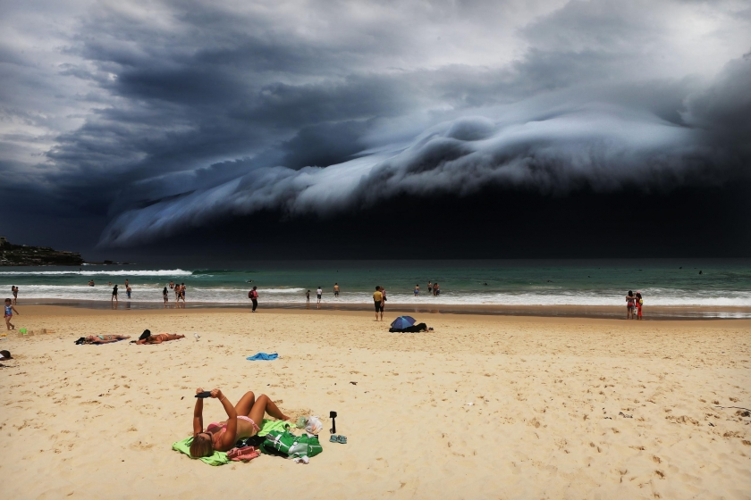 Nature, first prize singles: A massive 'cloud tsunami' looms over Sydney as a sunbather reads, oblivious to the approaching cloud on Bondi Beach. Rohan Kelly.