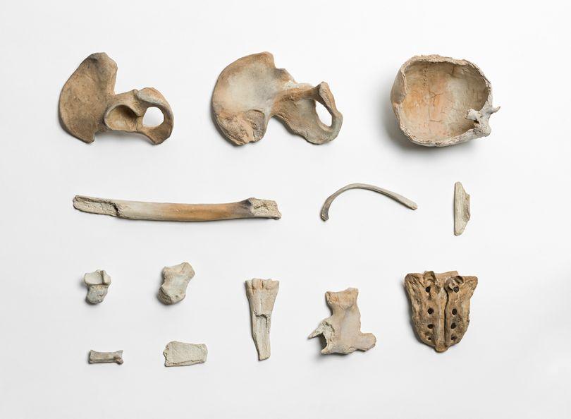 Ai Weiwei Remains, 2014 Porcelain, Ai Weiwei Studio