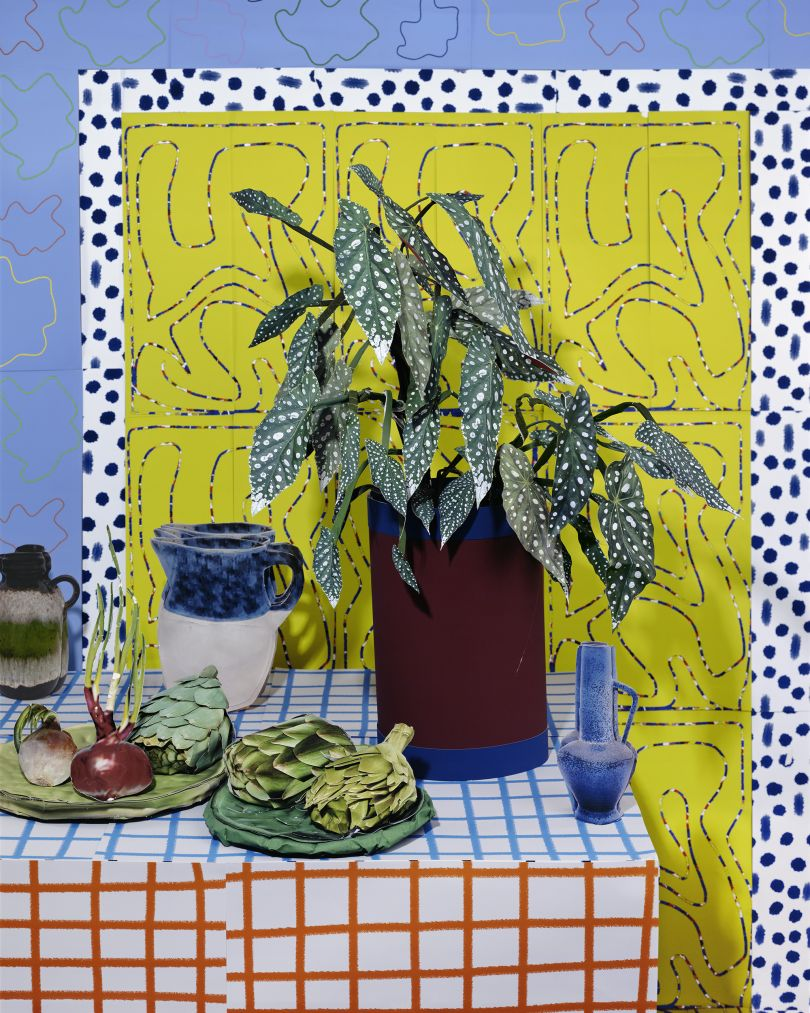 Begonia and Artichokes © Daniel Gordon